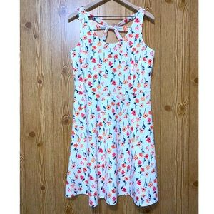 Maurices   NWT Floral Fit N' Flare Dress